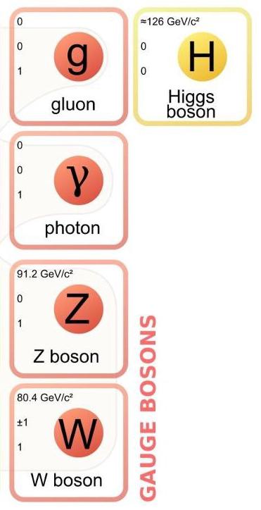 bosons